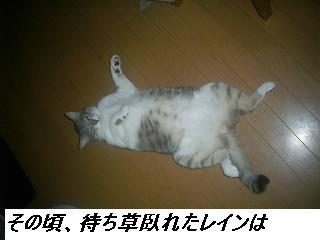 b0112380_18493786.jpg