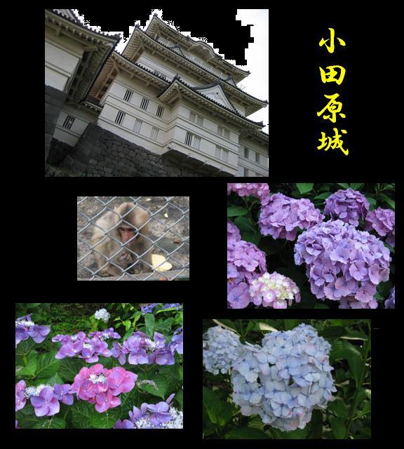 f0110488_18345753.jpg