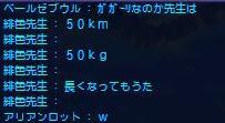 b0029489_559279.jpg