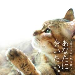 『あなたに会いたい。』CD発売間近!!_b0139897_22242264.jpg