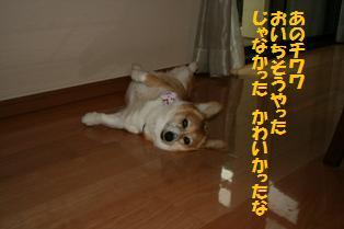 d0104705_10284045.jpg
