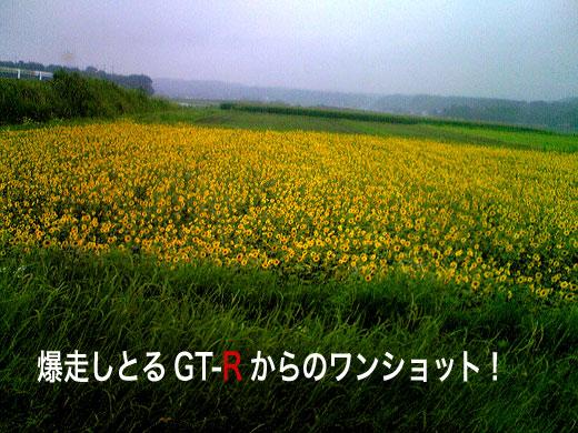 c0147123_20333298.jpg
