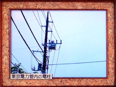 f0002759_1949515.jpg
