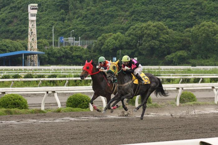 2008年6月22日(日) 高知競馬 1R_a0077663_653411.jpg