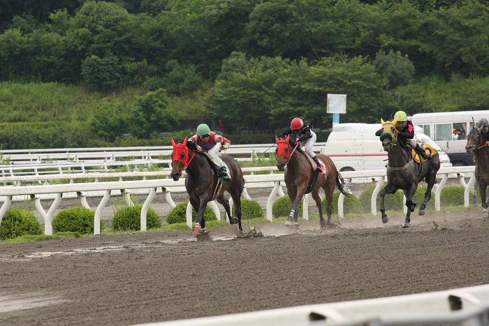 2008年6月22日(日) 高知競馬 1R_a0077663_721598.jpg