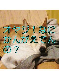 c0031794_19251543.jpg
