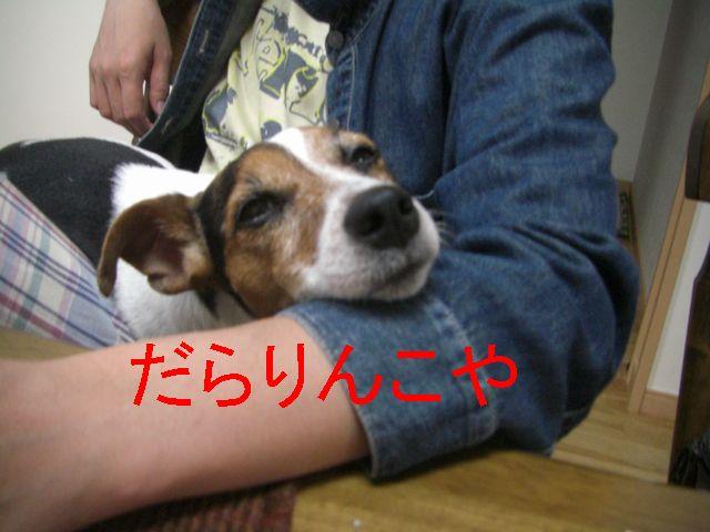 f0053952_10171789.jpg