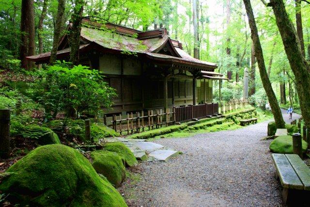 成田山公園_f0044056_10562688.jpg