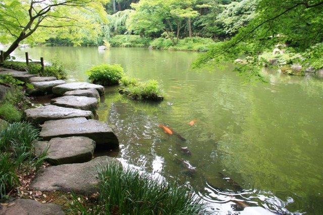成田山公園_f0044056_10584957.jpg