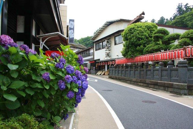 成田山公園_f0044056_116368.jpg