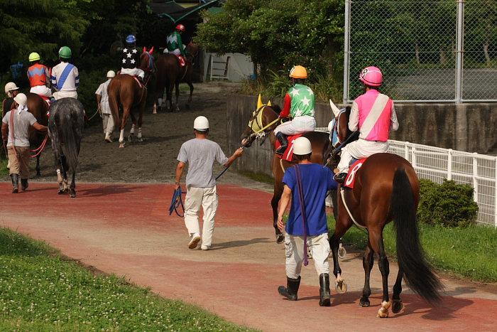 2008年6月29日(日) 高知競馬 10R 極暑特別 パドック_a0077663_19354061.jpg