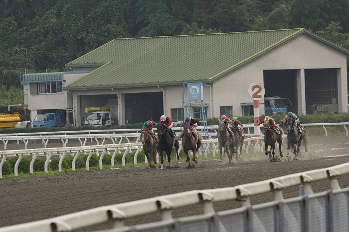 2008年6月29日(日) 高知競馬 10R 極暑特別 レース_a0077663_19581844.jpg