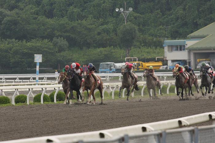 2008年6月29日(日) 高知競馬 10R 極暑特別 レース_a0077663_19582652.jpg