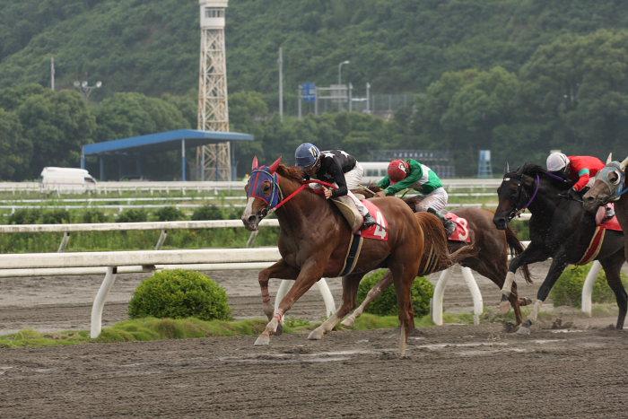 2008年6月29日(日) 高知競馬 10R 極暑特別 レース_a0077663_19583328.jpg