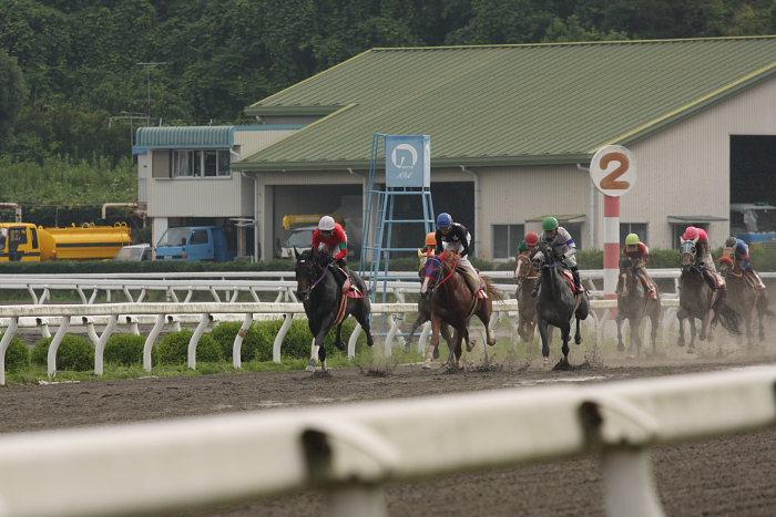 2008年6月29日(日) 高知競馬 10R 極暑特別 レース_a0077663_1958348.jpg