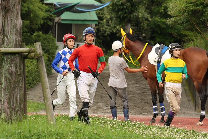 2008年6月22日(日) 高知競馬 5R_a0077663_812775.jpg