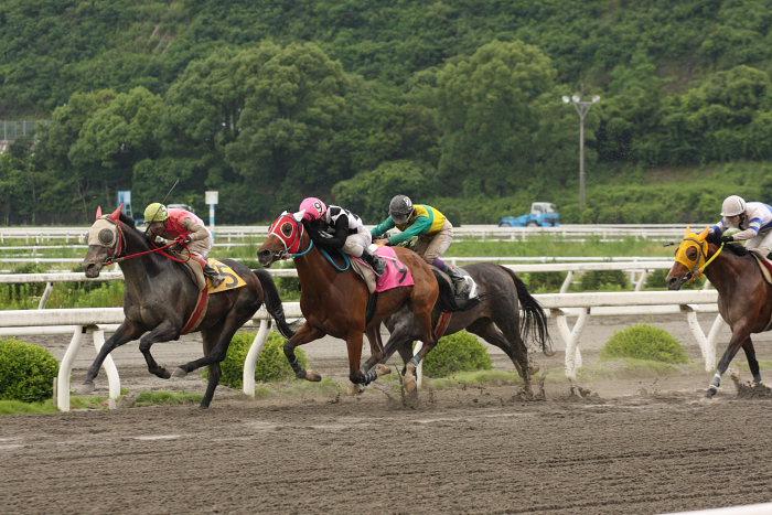 2008年6月22日(日) 高知競馬 5R_a0077663_822370.jpg