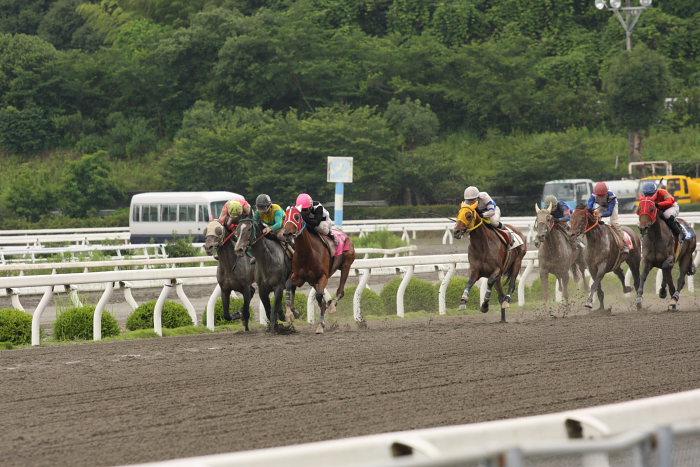 2008年6月22日(日) 高知競馬 5R_a0077663_82616.jpg