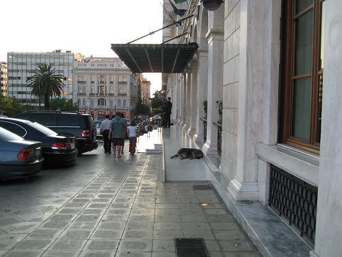 グランド・ブルターニュ・ホテルの格式あるノラちゃん_f0037264_20295942.jpg