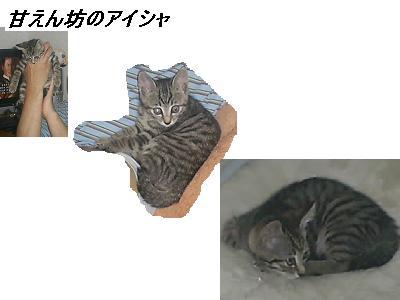 b0112380_1827119.jpg