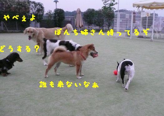 d0149089_020013.jpg