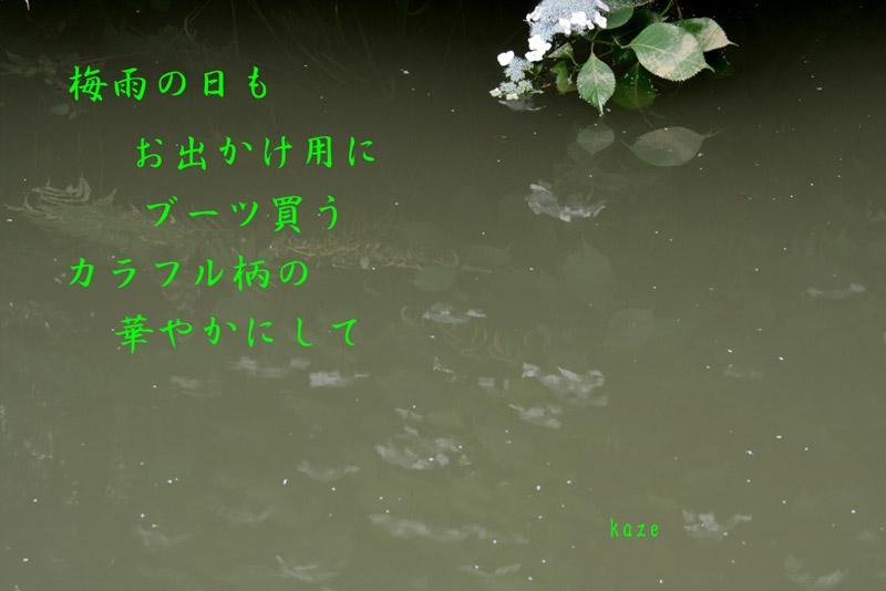 d0108506_20474512.jpg