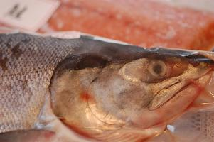 美味しいお鮭が届きました♪_e0071324_23151068.jpg