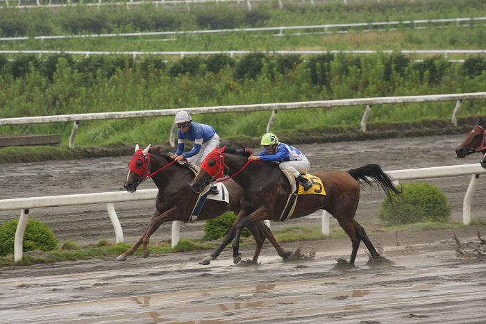 2008年6月29日(日) 高知競馬 4R_a0077663_18384756.jpg