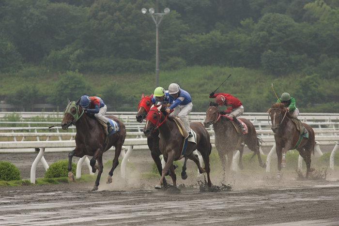 2008年6月29日(日) 高知競馬 4R_a0077663_18391472.jpg