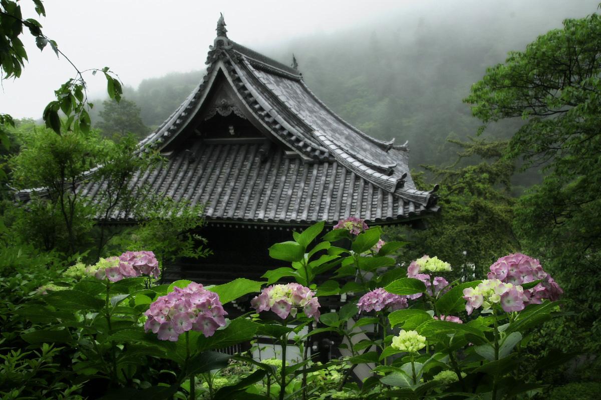 京都 西山三山 <善峯寺>  1_f0021869_1704947.jpg