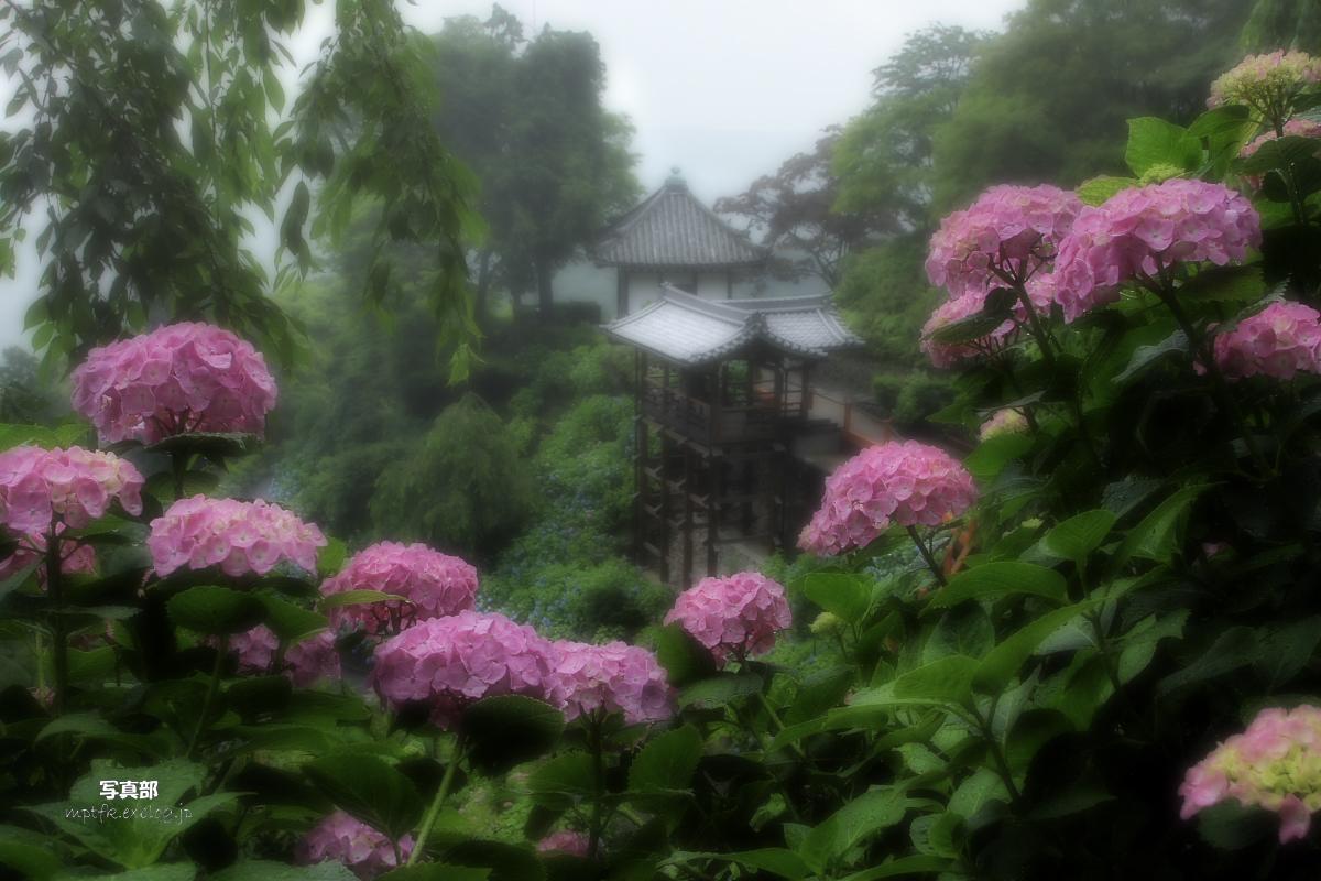 京都 西山三山 <善峯寺>  6_f0021869_19275268.jpg