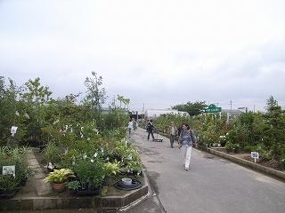 JA西三河 西尾市 憩の農園・バラ園_f0059988_9373017.jpg