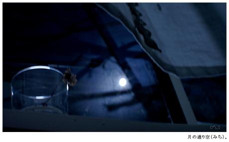 寝ながら月光浴。