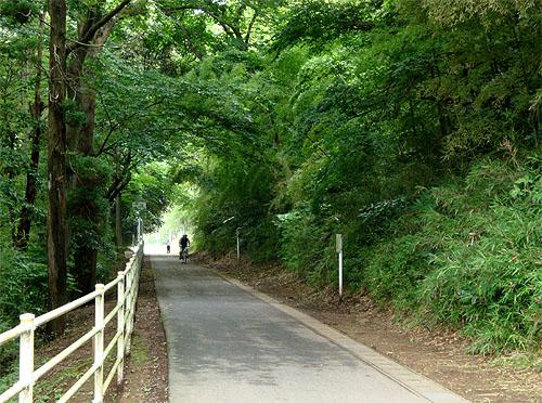 花見川サイクリングコース_c0137404_22345190.jpg