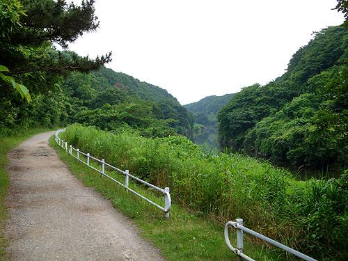 花見川サイクリングコース_c0137404_2311254.jpg