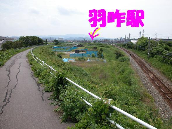 b0059978_22143020.jpg
