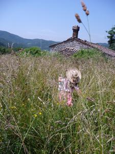 草原で昼寝_f0106597_0521699.jpg