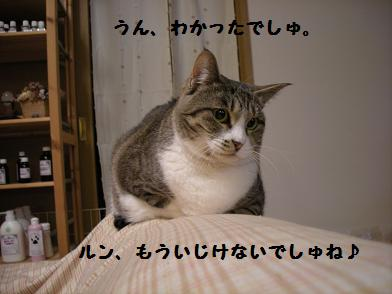 f0081100_17495463.jpg