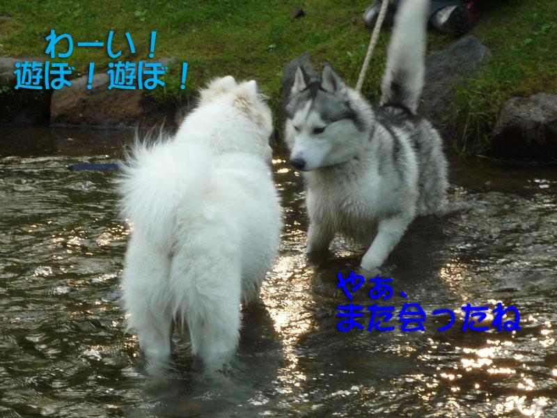 b0146024_16271067.jpg