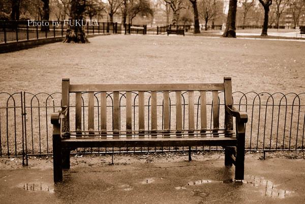 雨上がりの公園にて(ロンドン)Ⅳ_e0119641_9534880.jpg