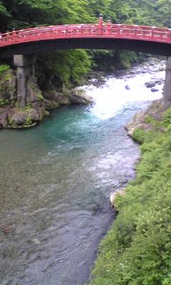 川が綺麗でちたぁ~_e0114246_19264275.jpg