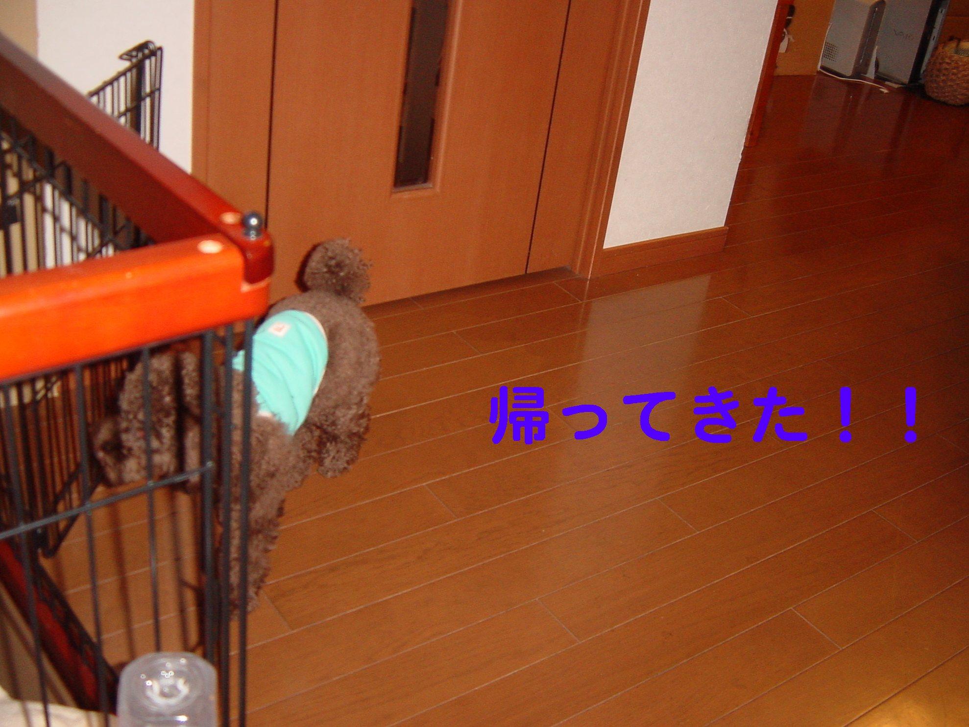 f0160757_23121728.jpg