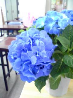 b0132389_16295076.jpg