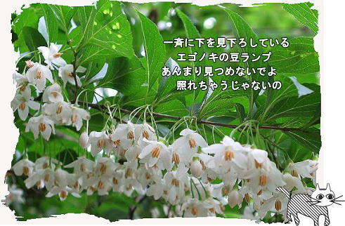 f0137096_13261438.jpg