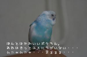 b0143835_14554180.jpg