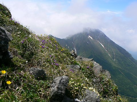 風の通り路50号は八ヶ岳の山_f0019247_22554771.jpg