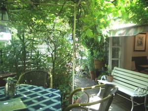 夏の庭で_a0077203_14333447.jpg