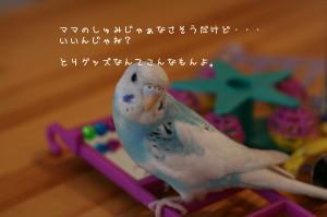 b0143835_16562750.jpg