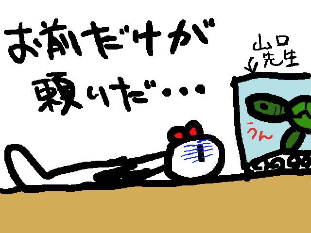 a0088057_315251.jpg