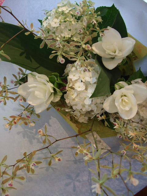 オークリーフ(真っ白なクルクマとエンシクリアの花束)_f0049672_15419.jpg